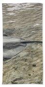 Stingray Beach Towel