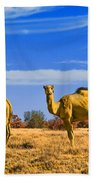 Stop And Stare V2 Beach Towel