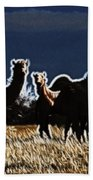 Stop And Stare V3 Beach Towel