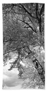 Storm Over The Cottonwood Trees - Black And White Beach Towel