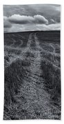 Storm Tracks Beach Towel