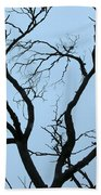 Stormy Trees Beach Towel