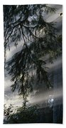 Stout Grove Redwoods With Sunrays Breaking Through Fog Beach Towel