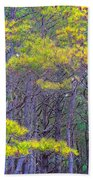 Straggly Pines Beach Towel
