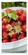 Strawberry Harvest Beach Towel