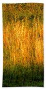 Straw Landscape Beach Towel