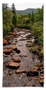 Stream Along Gros Morne Trail In Gros Morne Np-nl Beach Towel