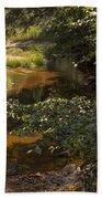 Stream Color Beach Towel
