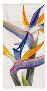 Strelitzia Flowers Beach Towel