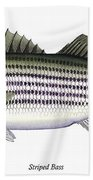 Striped Bass Beach Towel by Charles Harden