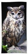 Striped Owl Beach Towel