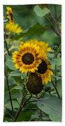 Striped Sunflower Beach Towel
