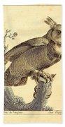 Strix Virginiana Owl Beach Towel