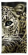 Strong Eyes Beach Towel