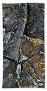Structural Stone Surface Beach Sheet