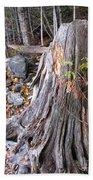 Stump Beach Sheet