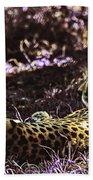 Styled Environment-the Modern Trendy Cheetah Beach Towel