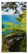 Subtropical Forest Of Abel Tasman Np In New Zealand Beach Towel