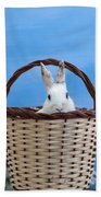 sugar the easter bunny 4 - A curious and cute white rabbit in a hand basket  Beach Towel