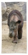 Sumatran Rhinoceros  Beach Towel