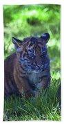 Sumatran Tiger Cub Beach Towel