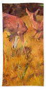 Summer Deer Beach Towel
