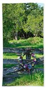 Summer Gate Beach Towel
