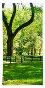 Summer In Central Park Manhattan Beach Towel