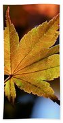 Summer Japanese Maple - 2 Beach Towel