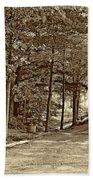 Summer Lane Sepia Beach Towel