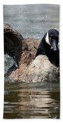 Summer Lovin - Canadian Goose Beach Towel