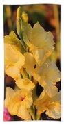 Summer Yellow Gladiolus Beach Towel