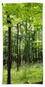 Summer's Green Forest Abstract Beach Towel