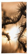 Sun And Frost Beach Towel
