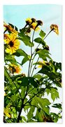 Sun Flowers In The Sun Beach Towel
