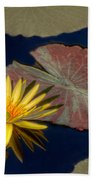 Sun-kissed Water Lily Beach Towel