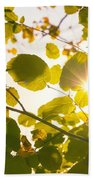 Sun Shining Through Leaves Beach Towel
