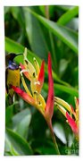 Sunbird On Heliconia Ginger Flowers Singapore Beach Towel