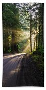 Sunburst At Redwood National Park Beach Towel