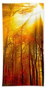 Sunburst In The Forest Beach Towel