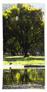 Sunday In The Park Beach Towel by Anne Mott