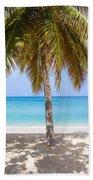 Sunday Palm Beach Towel