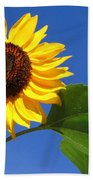 Sunflower Alone Beach Towel
