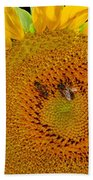 Sunflower And Bees Beach Towel