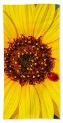 Sunflower And Ladybird Beetle 2am-110490 Beach Towel