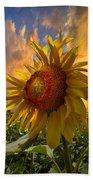 Sunflower Dawn Beach Towel