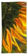 Sunflower Farm 1 Beach Towel