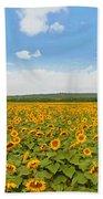 Sunflower Field New Jersey Beach Towel