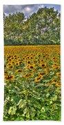 Sunflower Fields Ford World Headquarters Dearborn Mi Beach Towel