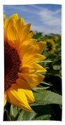 Sunflower Glow Beach Towel by Kerri Mortenson